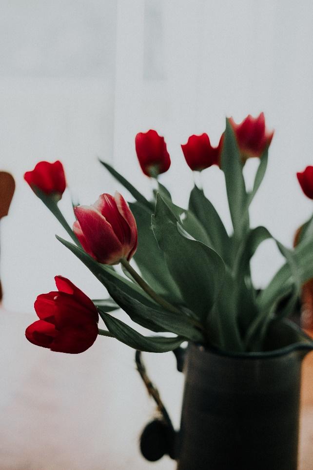 Eastern European dating website